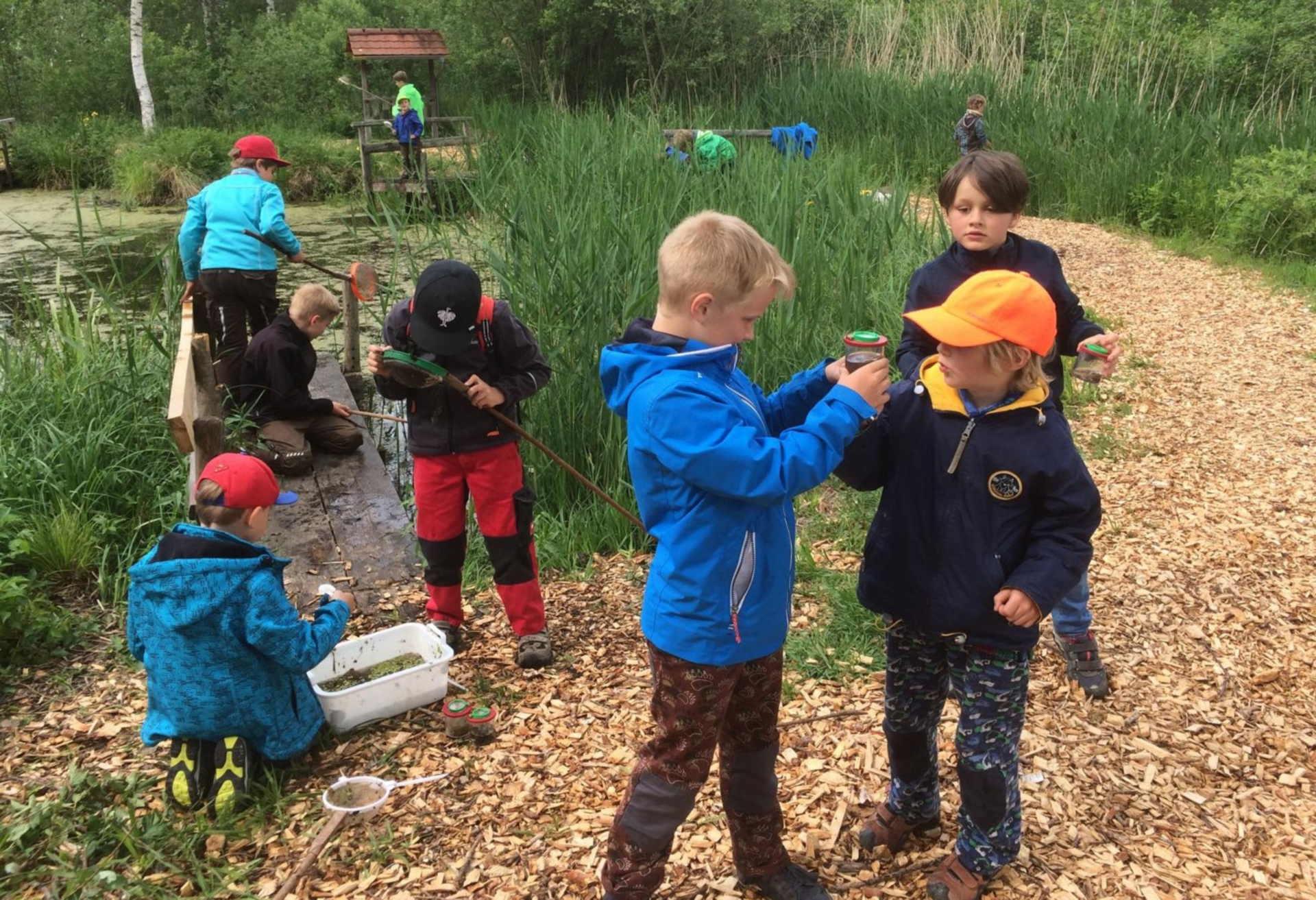 Naturerlebnisschule des Naturschutzzentrums Wilhelmsdorf